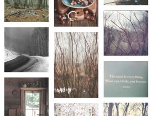 Tumblr copy