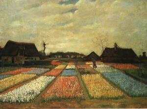 Goghflowerbedsholland