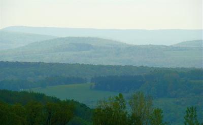 Blurryhills